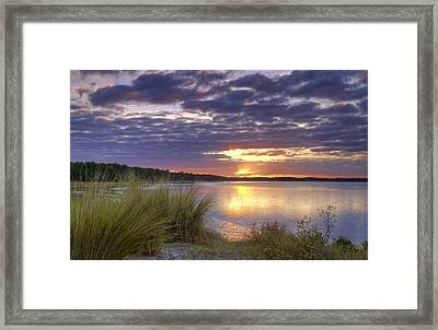 Tidal Estuary Framed Print by Phill Doherty
