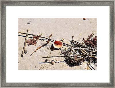 Tidal Treasures Framed Print