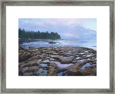 Tide Pools Exposed At Low Tide Framed Print by Tim Fitzharris