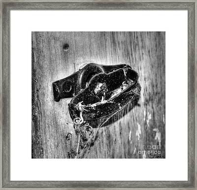 Tied In Time Framed Print