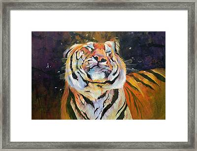 Tiger - Shaking Head  Framed Print by Odile Kidd