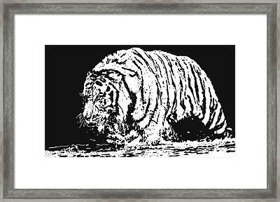 Tiger 3 Framed Print by Lori Jackson