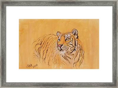 Tiger Alert Framed Print