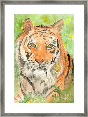 Tiger In The Meadow Framed Print by Delores Swanson