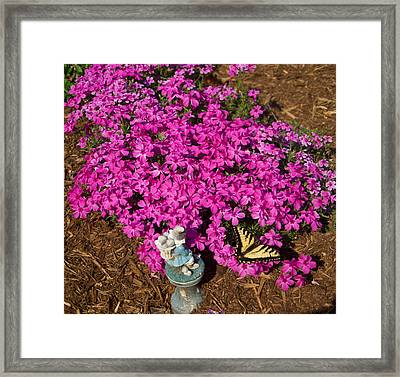 Tiger In The Phlox Framed Print