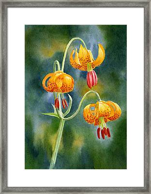 Tiger Lilies #2 Framed Print by Sharon Freeman