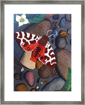 Tiger Moth On River Rocks Framed Print by Amy Reisland-Speer