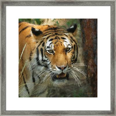 Tiger Painterly Square Format  Framed Print by Ernie Echols