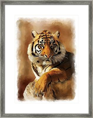 Tiger Portrait  Framed Print by Michael Greenaway