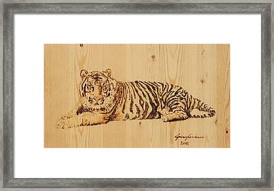 Tiger Pyrography Framed Print by Jeremy Cardenas