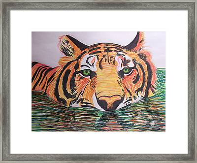 Tiger Framed Print by Sharon Tuff