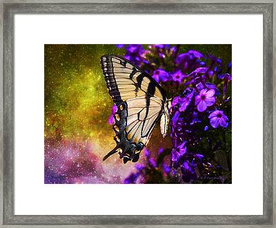 Tiger Swallowtail Feeding In Outer Space Framed Print