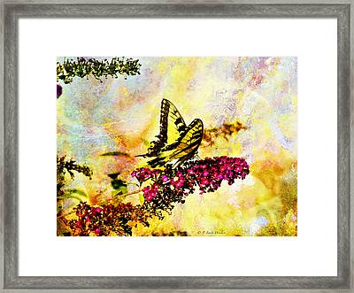 Tiger Swallowtail Feeding Framed Print by J Larry Walker