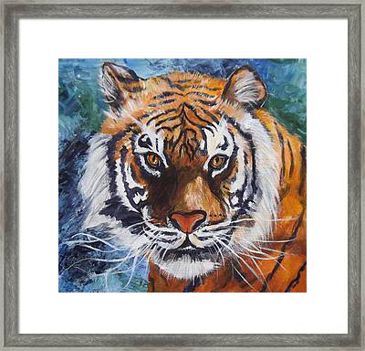 Tiger Framed Print by Trudy Morris