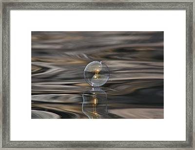 Tiger Water Bubble Framed Print by Cathie Douglas