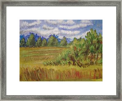 Tillar Field Framed Print by Belinda Lawson