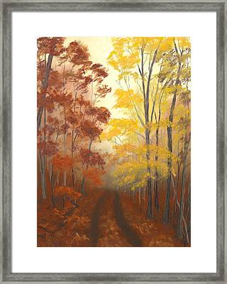 Timber Road Framed Print