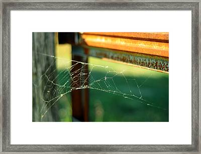 Time And Patience Framed Print