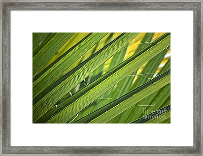 Time And Space Framed Print by Gwyn Newcombe