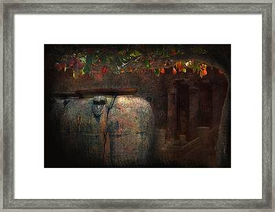 Time And The Clarity Of Sunlight Framed Print by Jeff Burgess