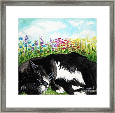 Time For A Snooze Framed Print by Elizabeth Robinette Tyndall