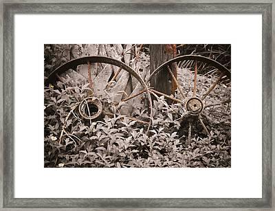 Time Forgotten Framed Print by Carolyn Marshall