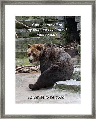 Time Out Bear Framed Print by Cindy Haggerty