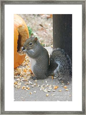 Framed Print featuring the photograph Time To Eat by Mark McReynolds