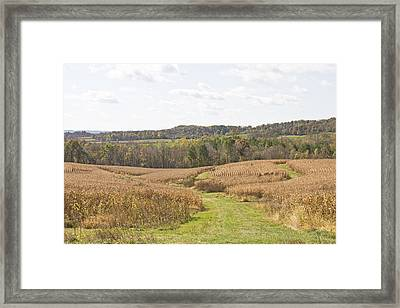 Time To Harvest Framed Print by Wayne Stabnaw