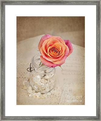 Framed Print featuring the photograph Timeless Beauty by Cheryl Davis