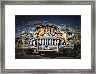 Timeless Beauty Framed Print by Elizabeth Wilson