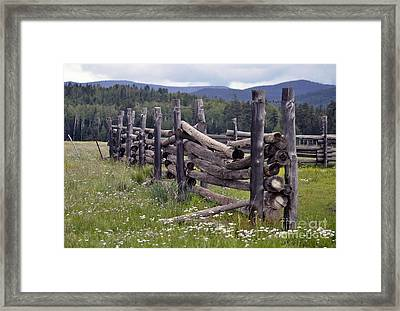 Timeless  Framed Print by Juls Adams