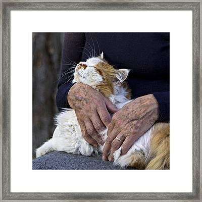 Timeless Love Framed Print