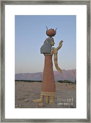 Timna Natural And Historic Park Framed Print by Shay Levy