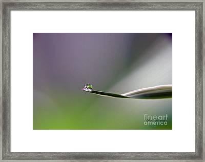 Tiny Finger Framed Print by Yumi Johnson