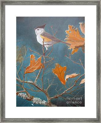 Titmouse Framed Print by Rick Mittelstedt
