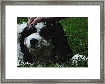 Framed Print featuring the photograph TLC by Lydia Holly