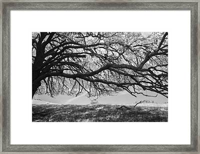 To Lie Here With You Would Be Heaven Framed Print by Laurie Search