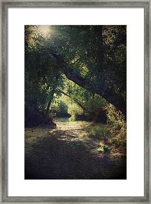To My Happy Place Framed Print by Laurie Search