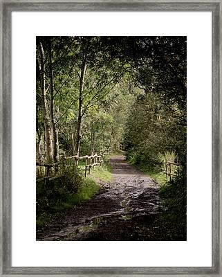 To The End Of September Framed Print by Odd Jeppesen
