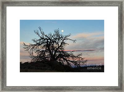To The Tune Of A Blue Moon Framed Print by Wesley Hahn