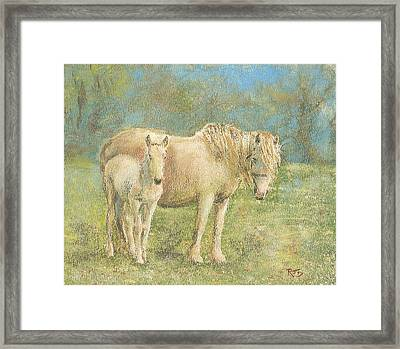Together New Forest Pony And Foal Framed Print by Richard James Digance