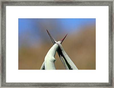 Together Framed Print by Ralf Kaiser