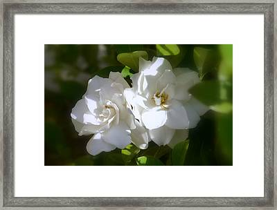 Framed Print featuring the photograph Together  by Rima Biswas