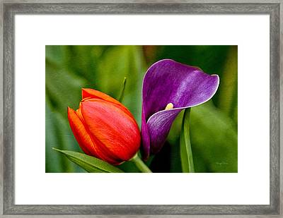 Togetherness Framed Print by Cheryl Davis