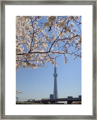 Tokyo Sky Tree Framed Print by Hisako Hatakeyama