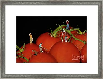 Tomato Beach Golf Classsic Framed Print by Bob Christopher