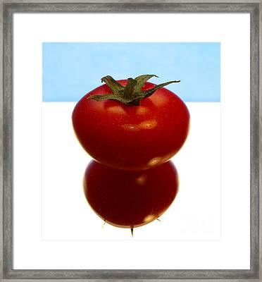 Tomato Framed Print by Odon Czintos
