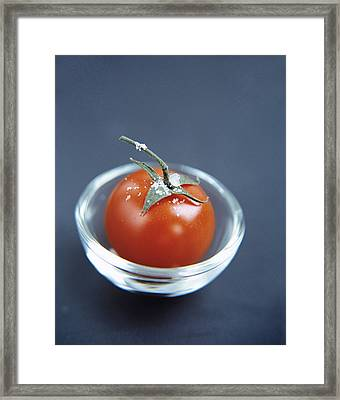 Tomato Framed Print by Veronique Leplat