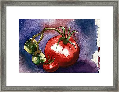Tomatoes Framed Print by Eunice Olson